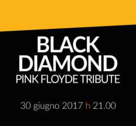 BLACK DIAMOND – Pink Floyd tribute band